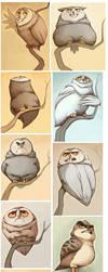 Owltober pt. 1 by Buuya