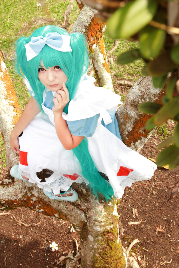 Vocaloid In Wonderland - Miku by Xeno-Photography