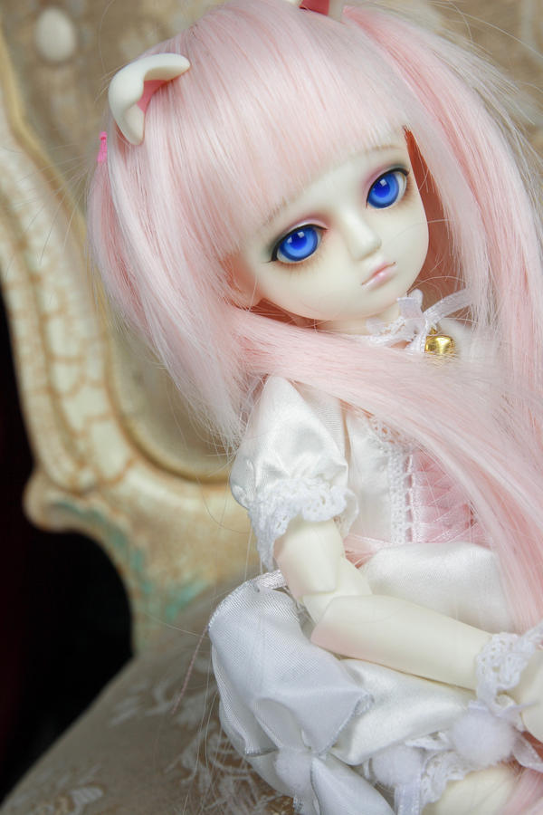 Dollfie - Eri by Xeno-Photography