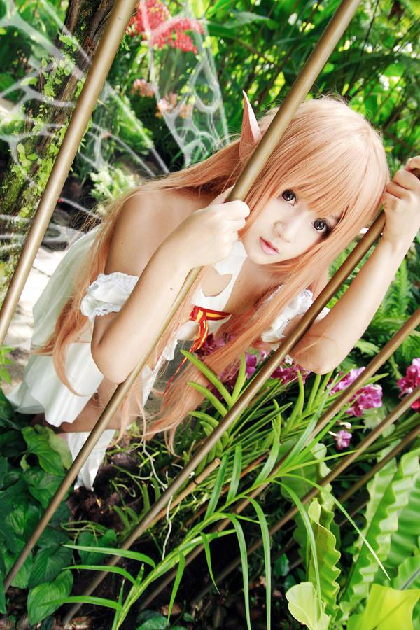 Sword Art Online - Alfheim Online - Asuna by Xeno-Photography