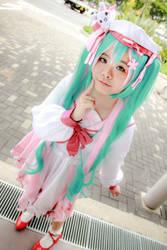 Vocaloid - Hatsune Miku by Xeno-Photography