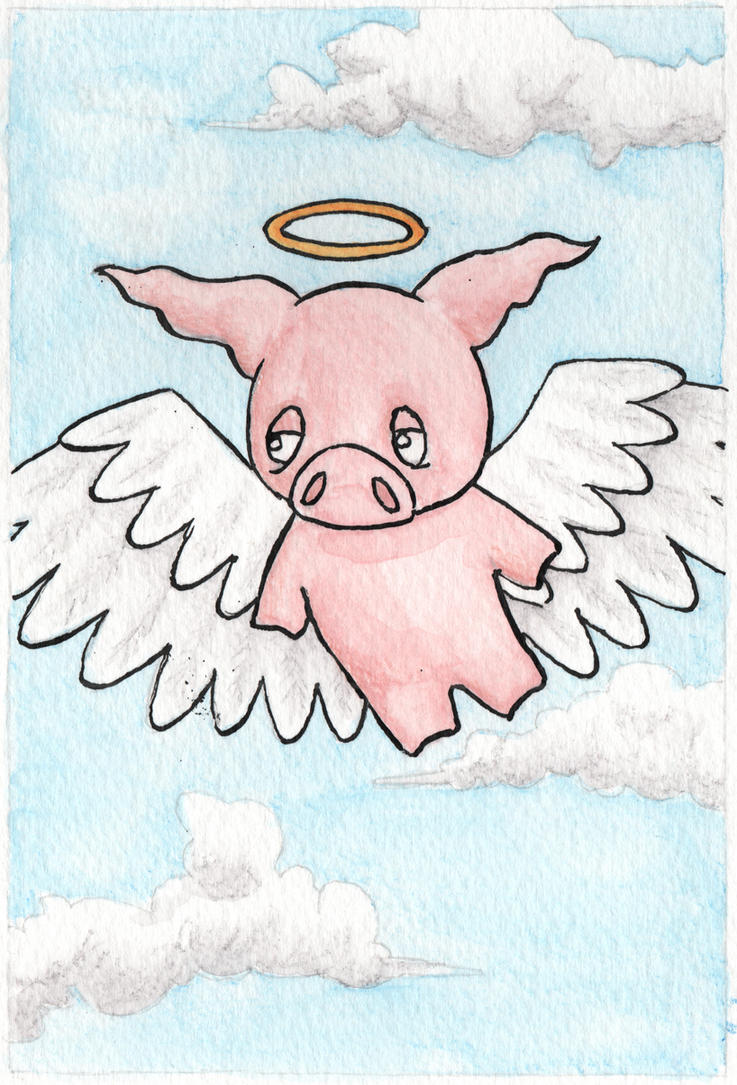 Angel pig by Stewbeck