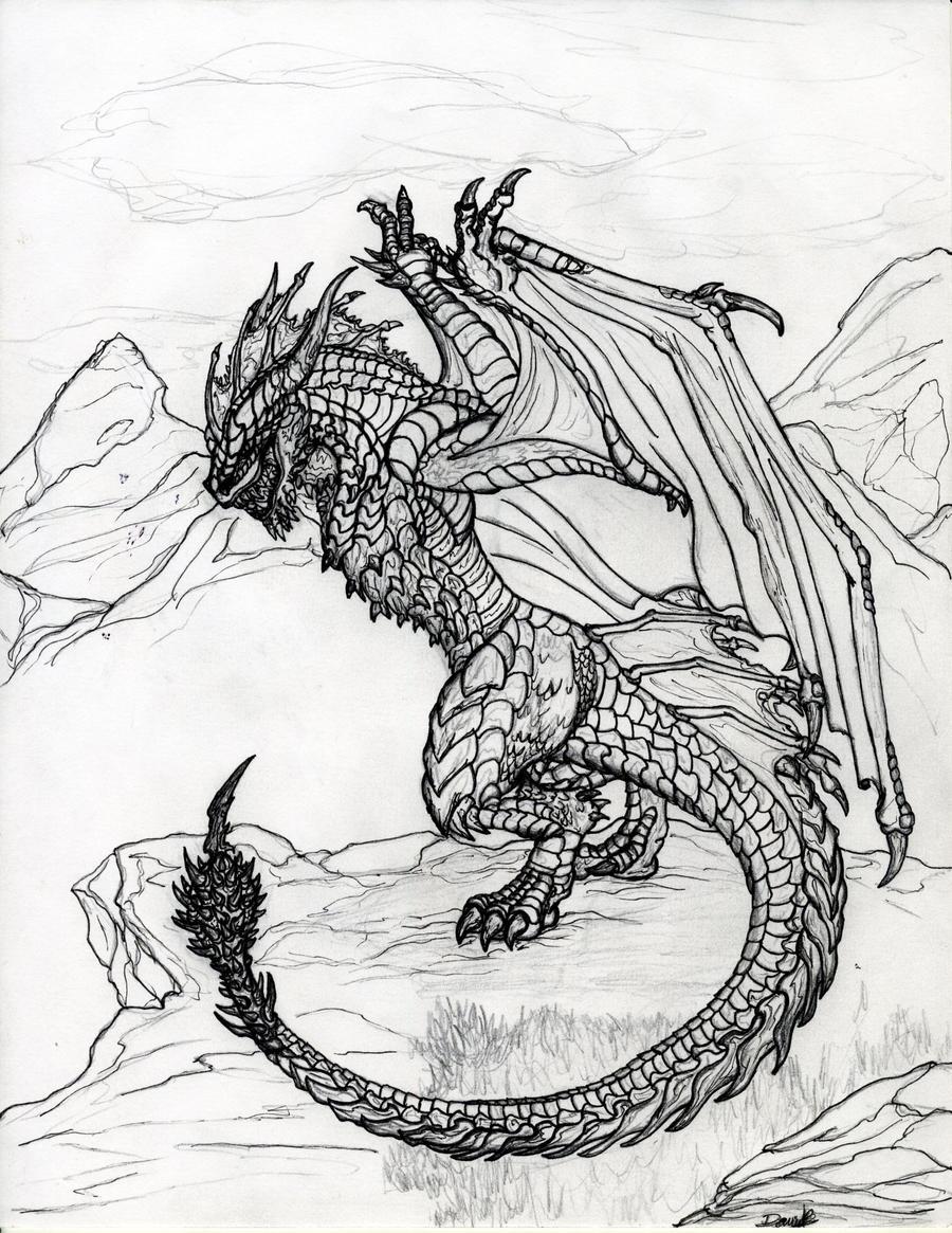 Wyvern by draks