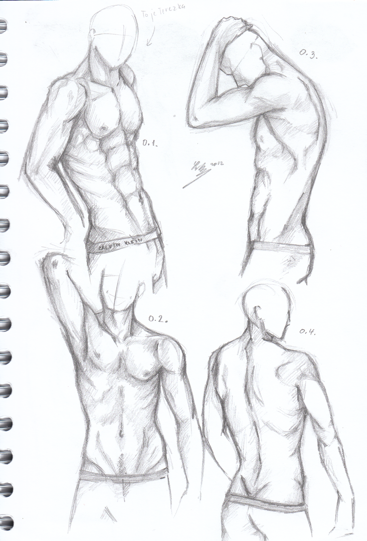 Male body drawing 736x1085