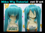 Miku wig tutorial: CUT and SET
