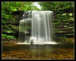 Harrison Wrights Falls 2011