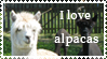Alpaca Stamp by SeptemberDragon