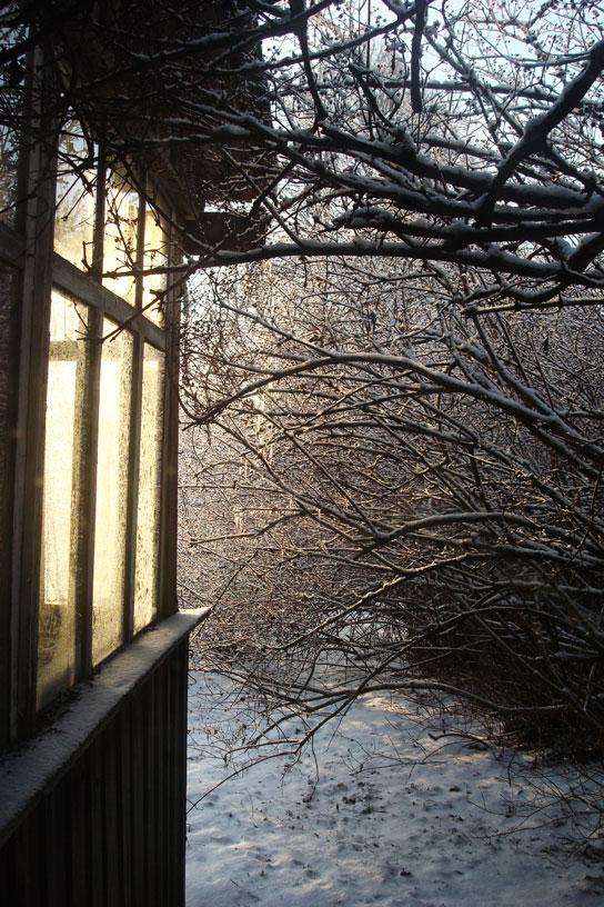 December Sunlight by w-shadow