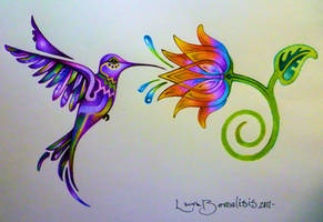colibri y la flor del arco iri