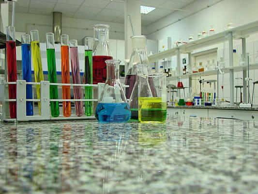 That's my lab. :)