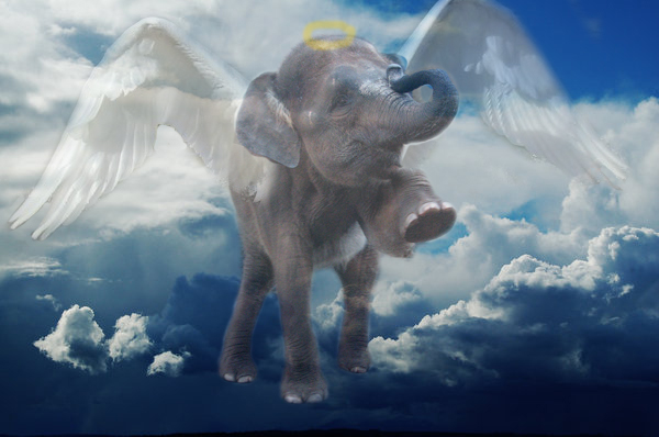 elephant_angel_by_xxwolfrickxx-d5dlrqd.j