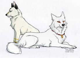 Maya and WS