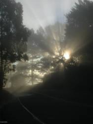 The Sunrise is my Peace by crocuta