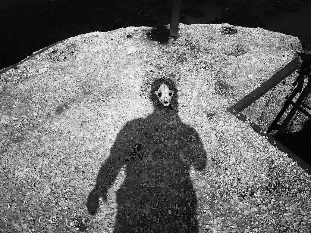 selfie by panferov