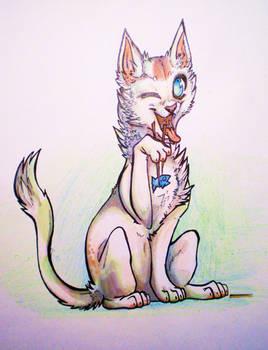 Feline X-change - Sushi Kitty