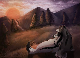 -Commission- Watching the Sunset by Makirou