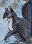 Collage part: Squirrel