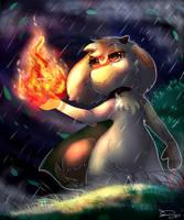 The Fire in the Rain