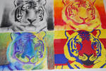 Colored Tiger Theory