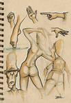 Brown doodles