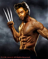 a Wolverine by peterg666666