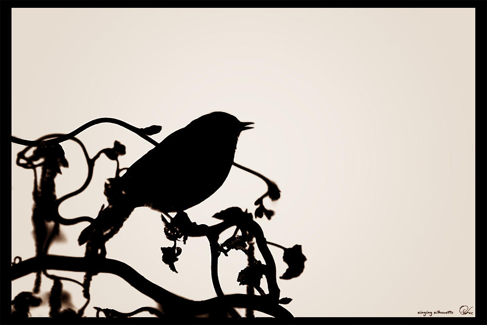 singing silhouette 2 by oetzy on DeviantArt