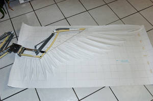 WIP articulated wings by Mashayahana