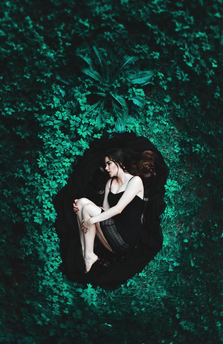 Nest by LinkyQ