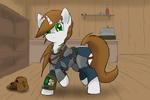 Pip's Armor