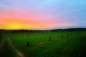 Sunset. by Daduunka