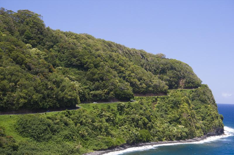 Wizardpub Hawaii Big Island