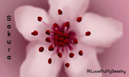 Sakura Blossom by RiLuvsFluffySesshy