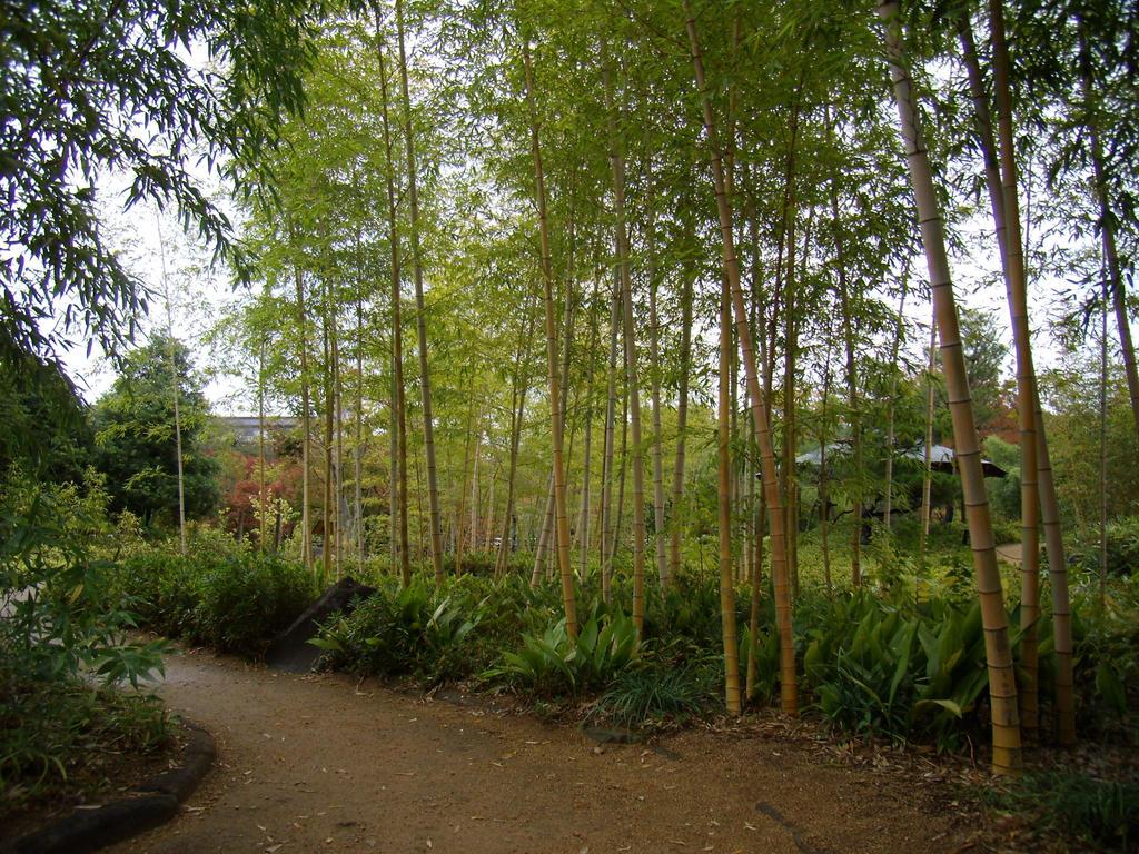 Jardins Himeji by LightKite
