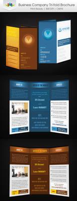 Business Company Tri-Fold Brochure