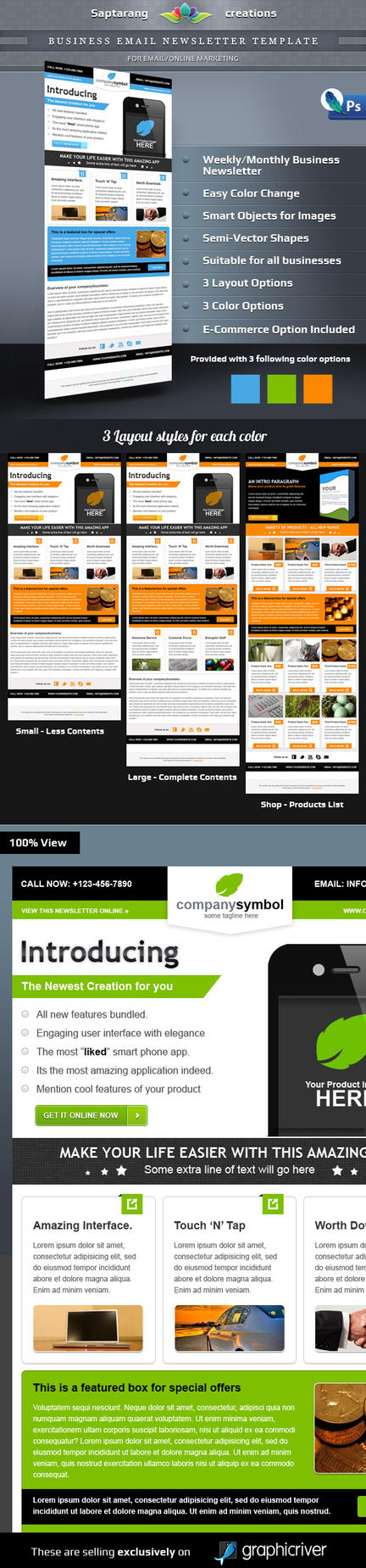 Business Email Newsletter Template by Saptarang