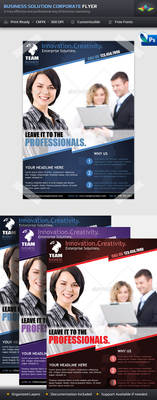 Business Solution Corporate Flyer