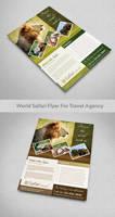 World Safari Flyer For Travel agency