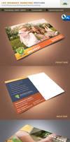 Life Insurance Marketing Postcard