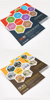 Multipurpose Product / Services Offer Flyer Vol 2