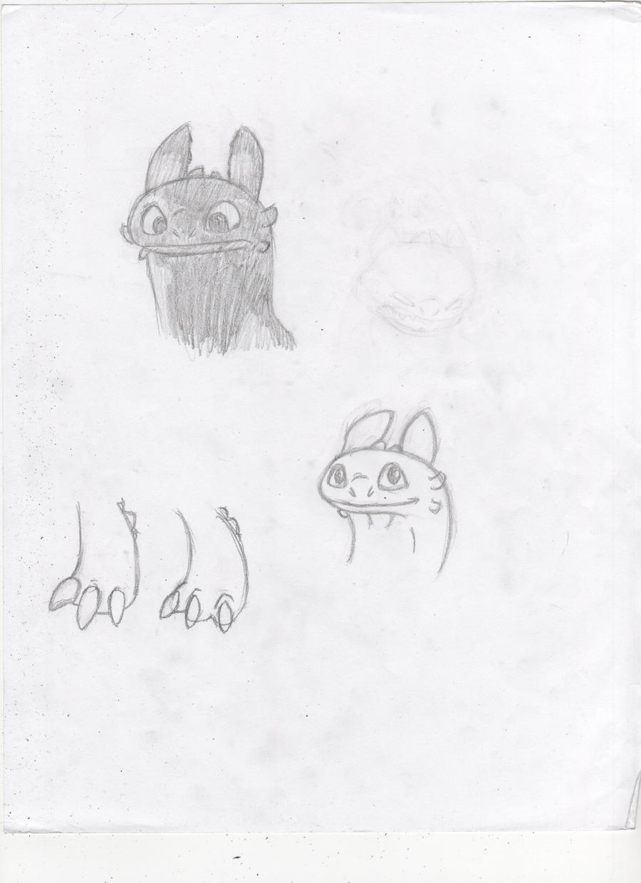 Toothless Sketches by Dragimal