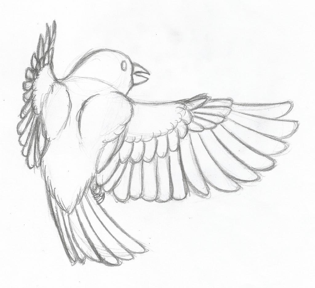 Flight by Dragimal