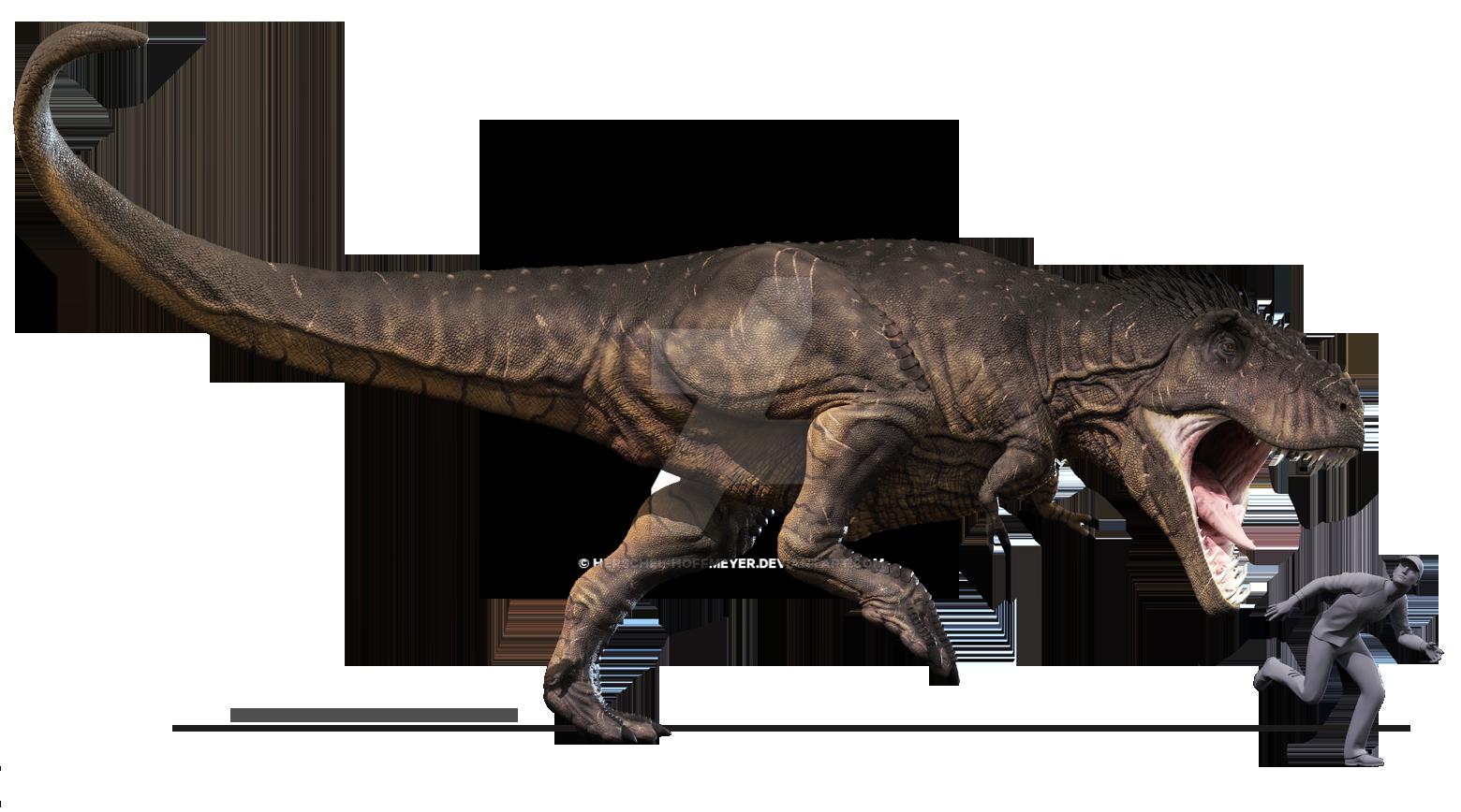 1560 x 868 png 934kBTyrannosaurus
