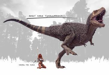 Male Tyrannosaurus Rex