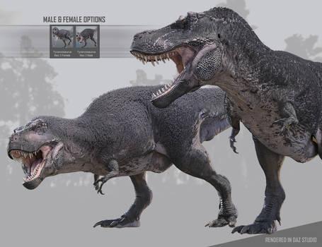 Tyrannosaurus Rex for Daz3D 05