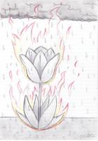 Bloom and Blaze by cbmcqttcf