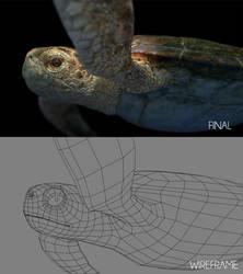 Sea Turtle Shot A_Breakdown by ltken84