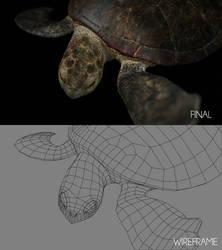 Sea Turtle Shot B_Breakdown by ltken84