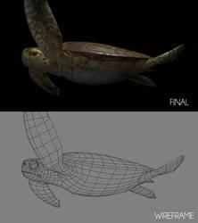 Sea Turtle Shot D_Breakdown by ltken84