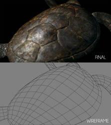 Sea Turtle Shot C_Breakdown by ltken84