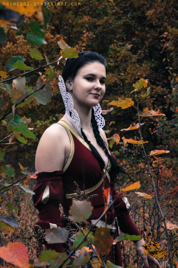 group picture clothing ideas - Philippa Eilhart The Witcher by vrihedd1 on DeviantArt